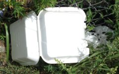 """The Environment Club at Silver Creek High School is finding ways to educate people on the harmful effects of styrofoam and find ways to make styrofoam more accessible. """"Styrofoam is a big issue because it produces a lot of greenhouse gases while it's breaking down,"""" said Kataria. Photo credit to CMZ on Flickr, Creative Commons License, and link to photo: https://www.flickr.com/photos/massczm/19503943314/in/photostream/"""