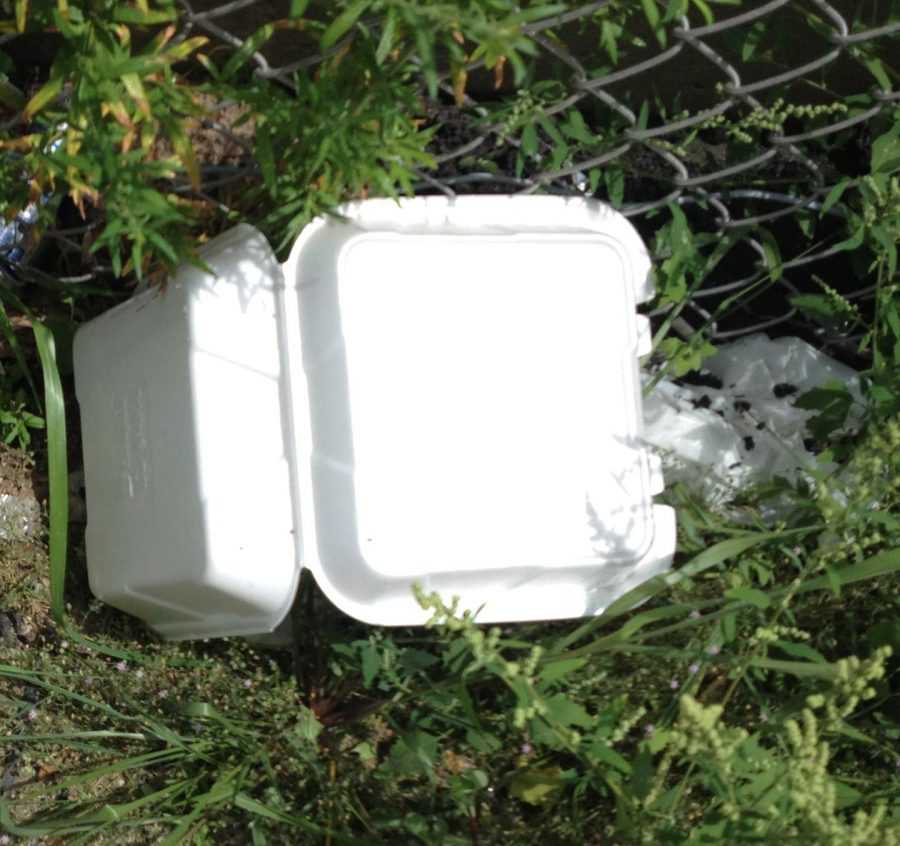 "The Environment Club at Silver Creek High School is finding ways to educate people on the harmful effects of styrofoam and find ways to make styrofoam more accessible. ""Styrofoam is a big issue because it produces a lot of greenhouse gases while it's breaking down,"" said Kataria. Photo credit to CMZ on Flickr, Creative Commons License, and link to photo: https://www.flickr.com/photos/massczm/19503943314/in/photostream/"